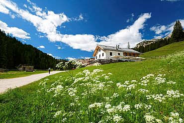 Vacanza a val di fosse for Affitto chalet cortina